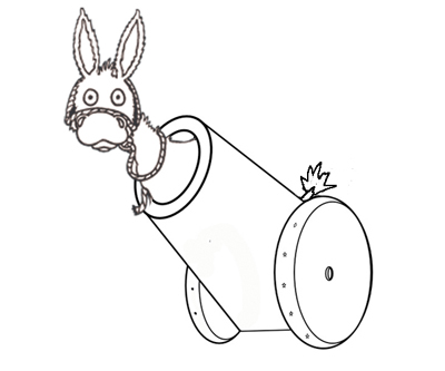 donkey_launcher